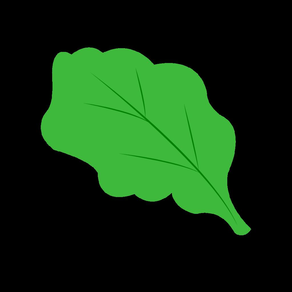 Lettuce Simple Graphic